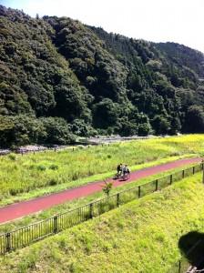 Kanagawa prefectural Museum of Natural History