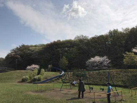 Hikijigawa Shinsui park in Fujisawa city