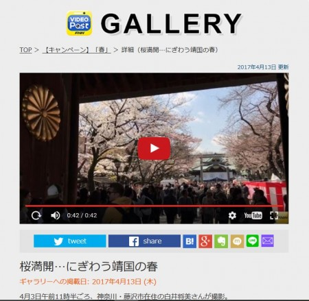 FNN Video Post Cherry blossoms at Yasukuni shrine