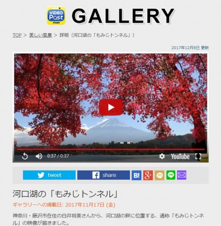 FNN Video Post Autumn leaves and Mt.Fuji at Momiji tunnel
