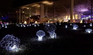 Smart illumination Yokohama2014