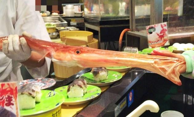 Cornet fish