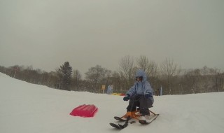 First sled ride in Kiroro Resort