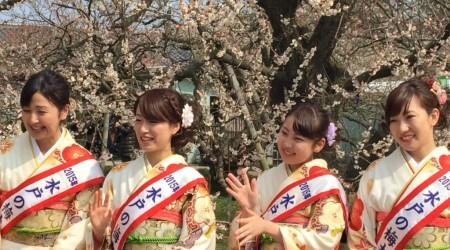 Ume ambassador2015 in Mito city