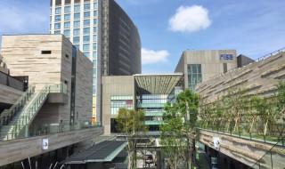 Futako-Tamagawa Rise Terrace Market