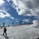 Snowtown Yeti