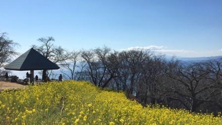 Azumayama park