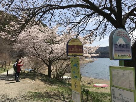 Sunnide Resort / Nagasaki Park Ent. bus stop