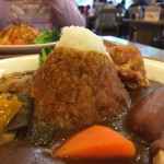 Fujisan Curry
