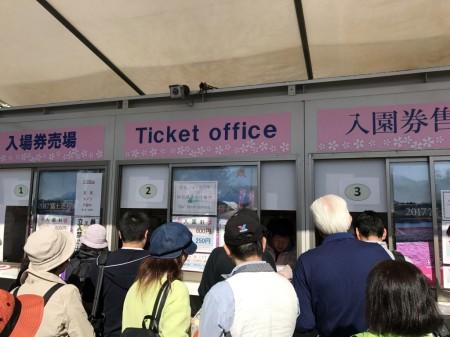 Ticket office in Fuji Shibazakura festival