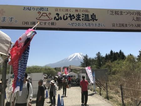 Entrance of Fuji Shibazakura festival