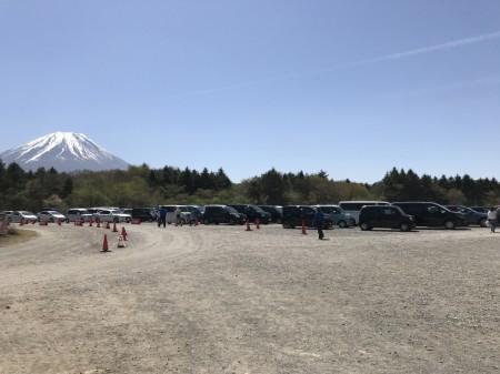 Parking lot of Fuji Shibazakura festival