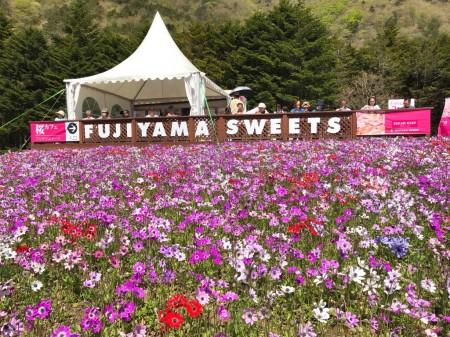 FUJIYAMA SWEETS at Fuji Shibazakura festival