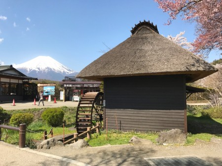 Water mill,Cherry blossoms and Mt.Fuji at Oshino Hakkai