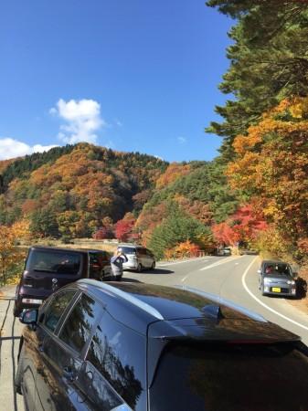 momiji tunnel in lake Kawaguchi in Japan