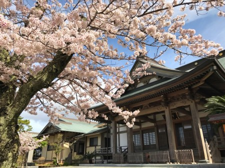 Kaizando Hall in Kyumoji temple in Kamakura