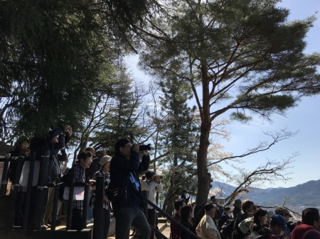 Observation deck of Arakurayama Sengen Park