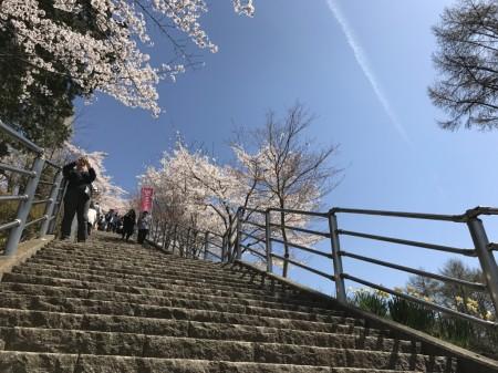 Path of 398 Steps at Arakurayama Sengen Park