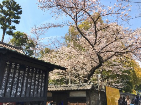 Entrance of Zojoji temple
