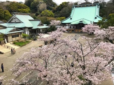 Scenery from top of the Sanmon gate at Komyoji temple in Kamakura