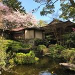 Kami-ike inHotoku Ninomiya Shrine