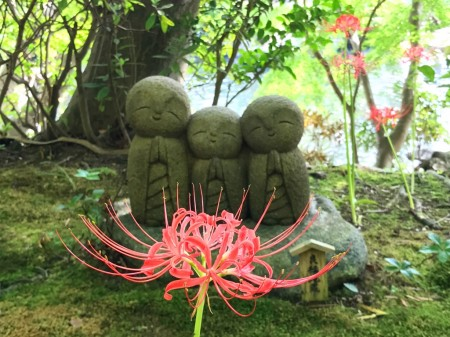 spider lily and Jizo statue in Hase Temple