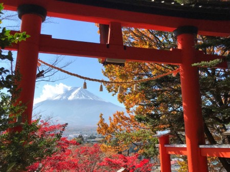 Autumn leaves , Mt.Fuji and torii gate in Arakurayama Sengen Park