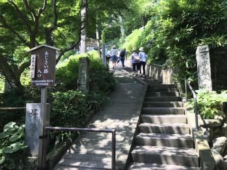 Entrance of hydrangea path at Hase Temple in Kamakura