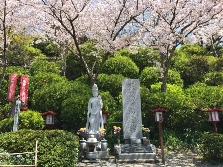 War memorial and cherry blossoms at Ofuna Kannon-ji temple