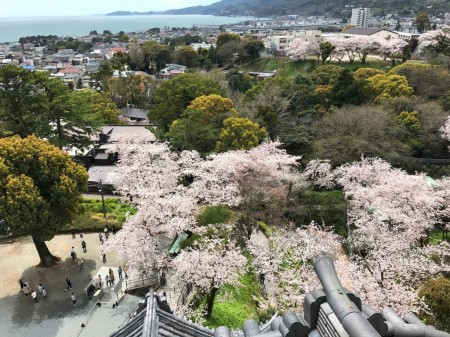View of the observation deck of Odawara castle