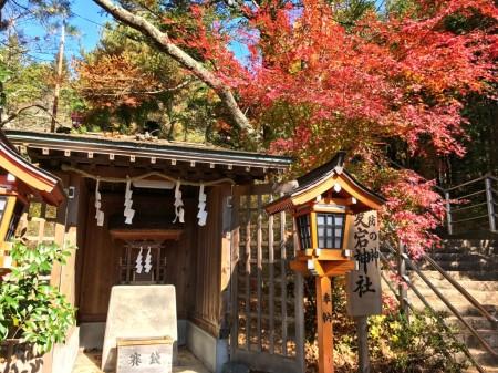 Autumn leaves in Arakurayama Sengen Park