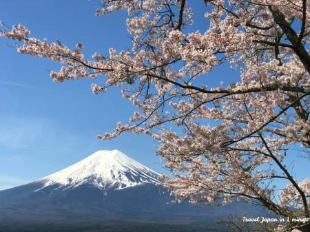 Mt.Fuji at Arakurayama Sengen Park