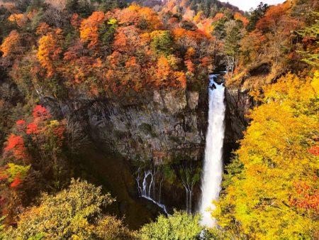 Autumn leaves of Kegon falls