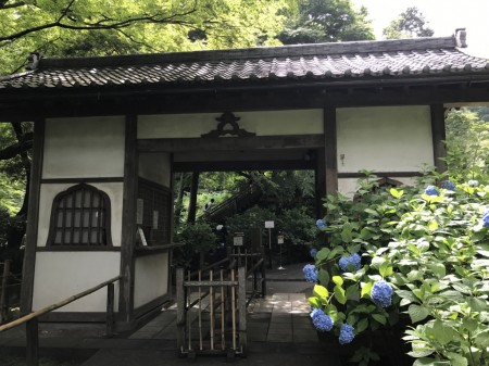 Ticket counter at Meigetsuin temple in Kamakura