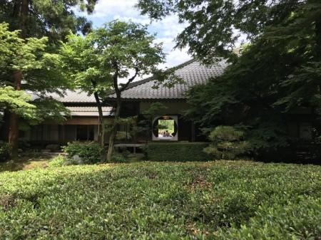 Inner garden at Meigetsuin in Kamakura