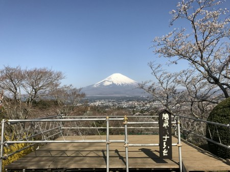 Observatory deck and cherry blossoms at Heiwa Koen Park