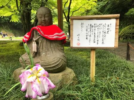 Red Jizo with iris at Meigetsuin in Kamakura