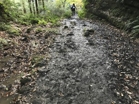 Tenen Hiking Course in Kamakura