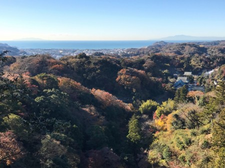 Sagami Bay and Kenchoji temple from Shojoken Observatory in Kamakura