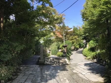 Pathway to Kaizo-ji temple in Kamakura