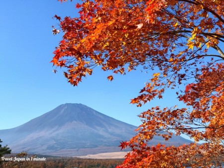Autumn leaves and Mt.Fuji at Yuyake-no-Nagisa in lake yamanaka