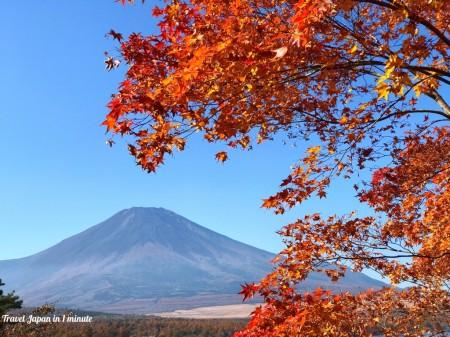Autumn leaves and Mt.Fuji at Yuyake-no-Nagisa in lake yamanaka