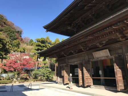 Hatto (Dharma Hall) and autumn leaves in Kenchoji temple
