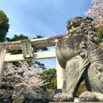 Takeda Shrine in Kofu city