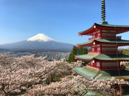 Cherry blossoms,Mt.Fuji and Chureito pagoda Arakurayama Sengen Park