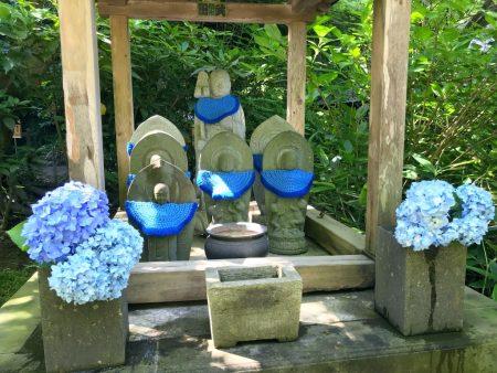 Hydrangea and Jizo statue in Meigetsuin Temple
