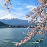 Mount Fuji and cherry blossoms in Ubugayasaki