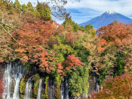 Shiraito Falls and Mt.Fuji in 2018