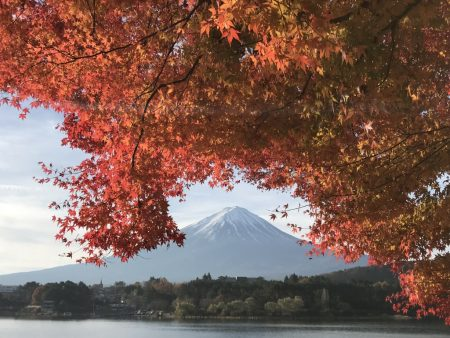 Autumn leaves and Mt.Fuji by iPhone7 Plus