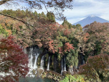 Autumn leaves and Mt.Fuji at Shiraito Falls by iPhone XS Max